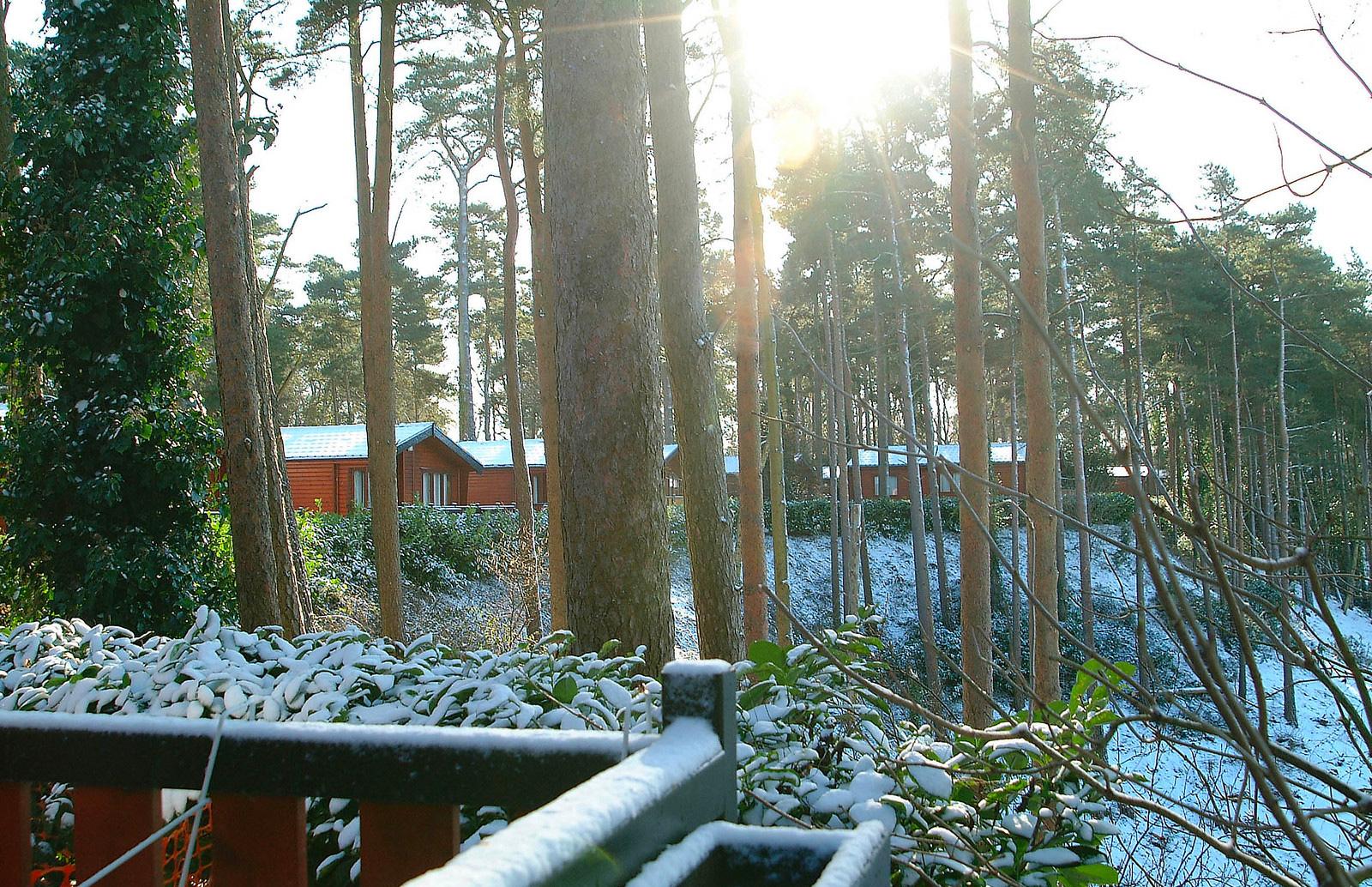 san-winter-tips-3