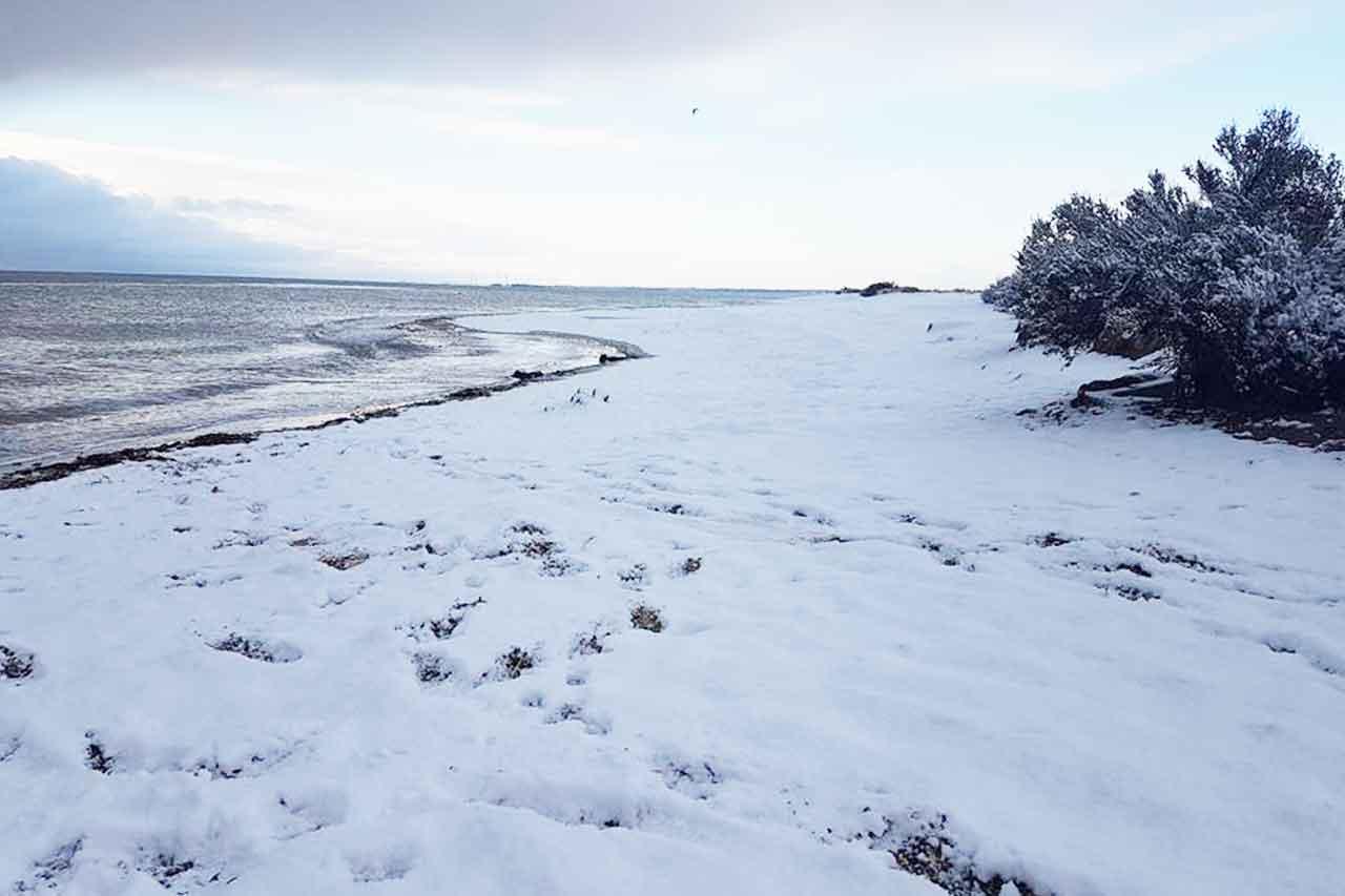 Mersea-Island-Snow