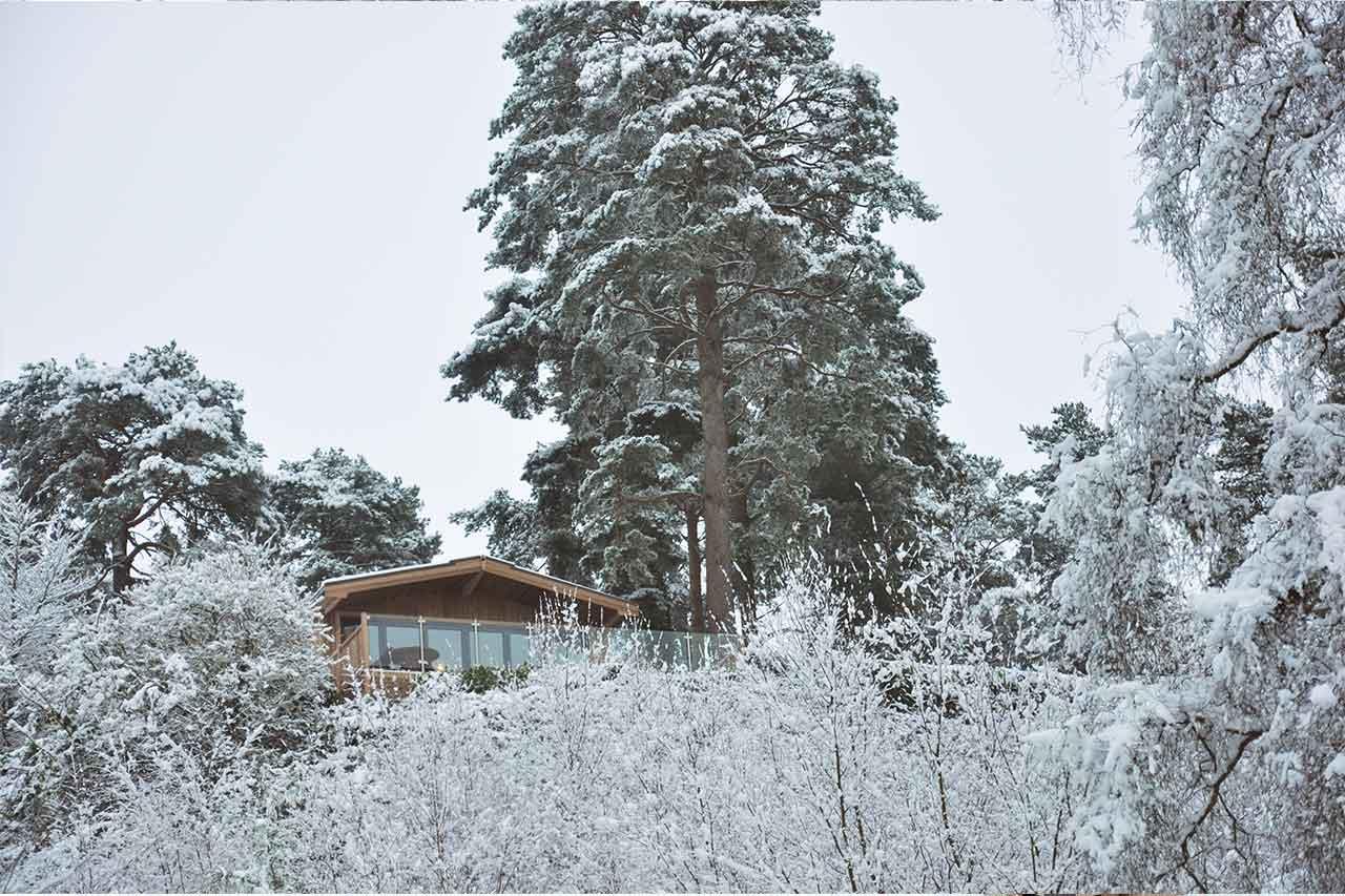 SB-snow-2