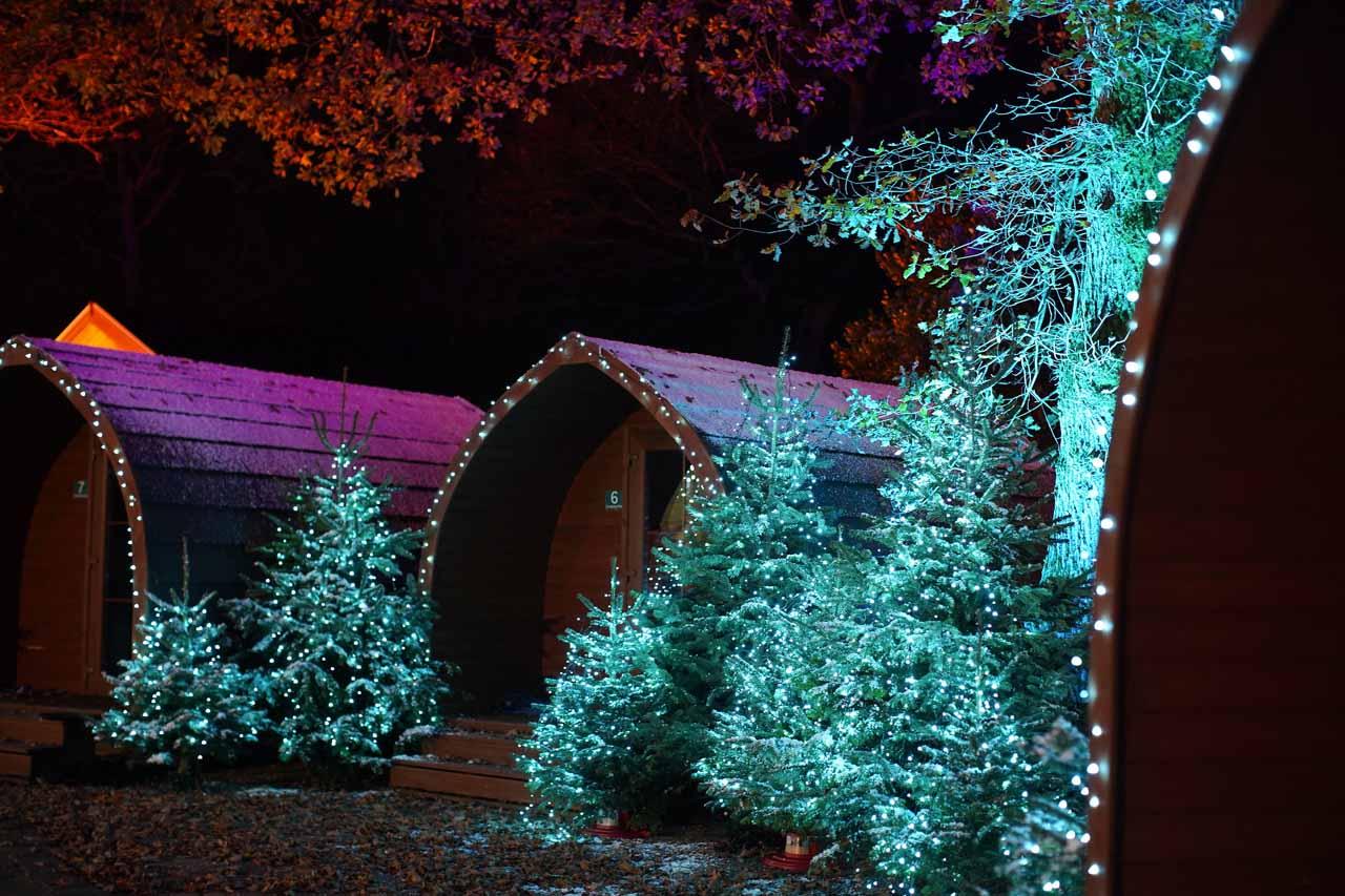 forest light pods 1280x853